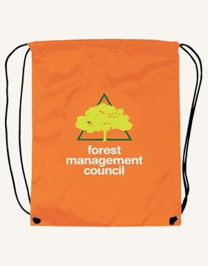 Nylon Drawstring Backpack - Screen Print